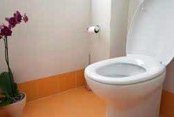 Poop Dream Interpretation