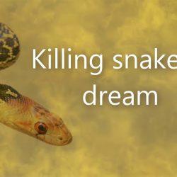 killing snake in a dream